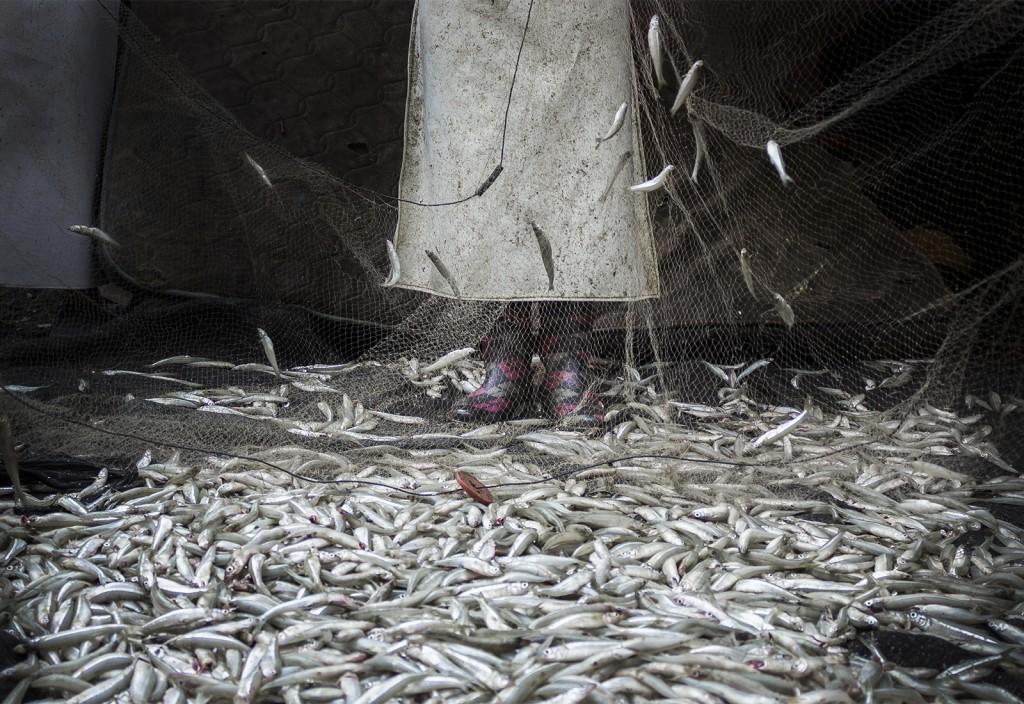 FISHING_layoutphoto_02